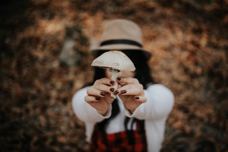 Magic truffles
