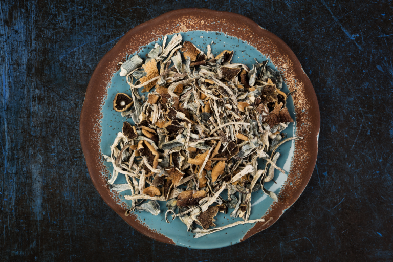 psychoactive mushrooms